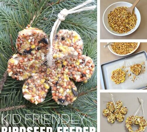 How To Make Birdseed Feeder Ornaments with Gelatin