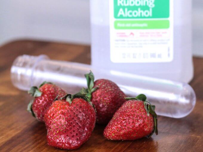 Strawberry DNA Science Activity for Kids Food Science