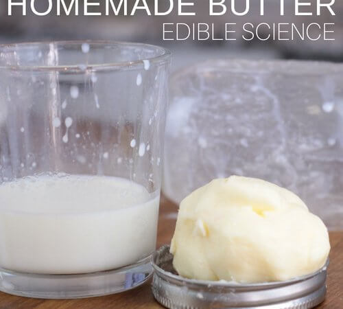 Make Homemade Butter Edible Science Activity for Kids