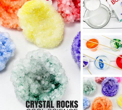 How To Grow Crystals with Borax Science Project for Kids