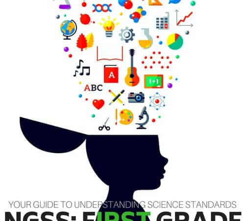 First Grade Science Standards (NGSS Series)