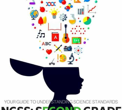 Second Grade Science Standards (Understanding NGSS Grade 2)