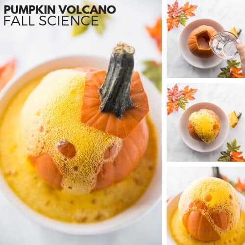 Pumpkin Volcano for Thanksgiving Science Activities