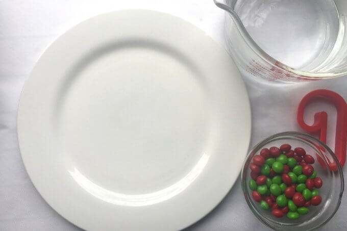 Christmas skittles science activity supplies
