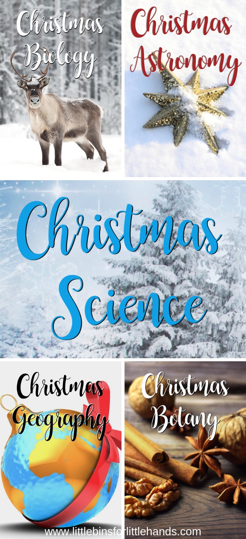5 Days of Christmas Science Projects and Fun Science facts for Christmas with Kids