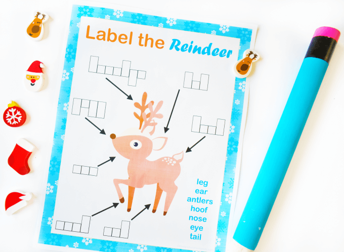 Reindeer parts printable activity