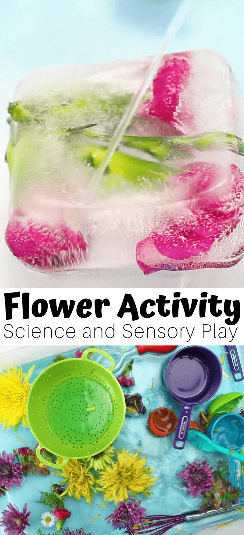 3 in 1 flower activities for preschoolers.