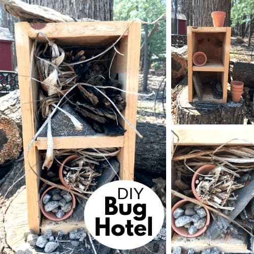 spring activity - build an insect hotel