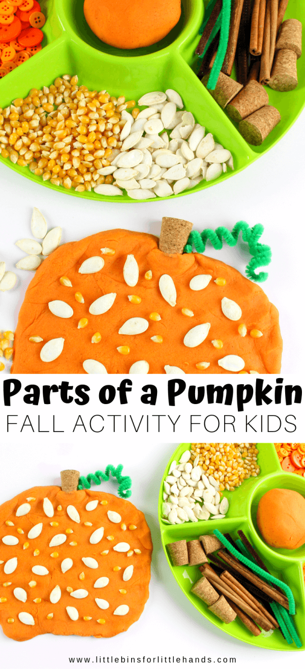 Pumpkin Playdough Recipe