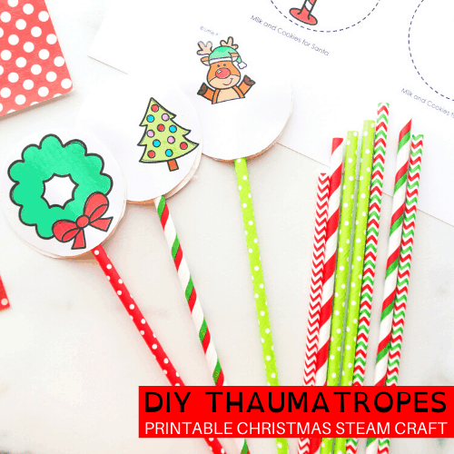 How to make a thaumatrope for Christmas!