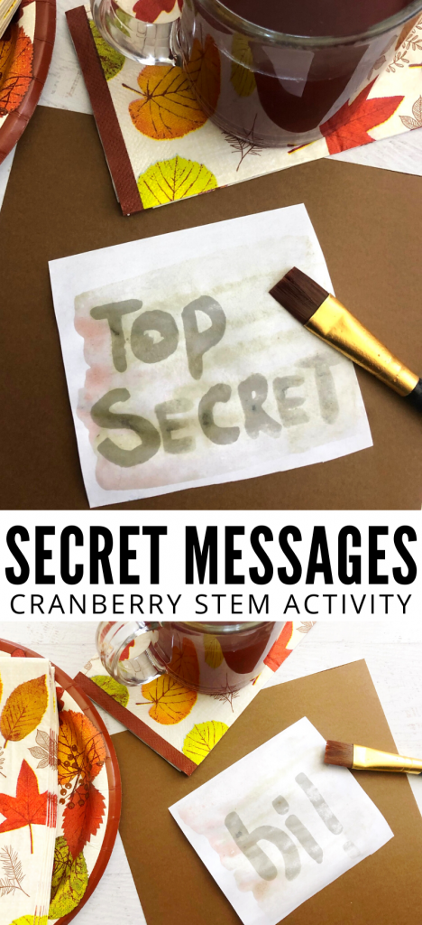 Have fun this Thanksgiving with a cranberry secret message activity for kids.