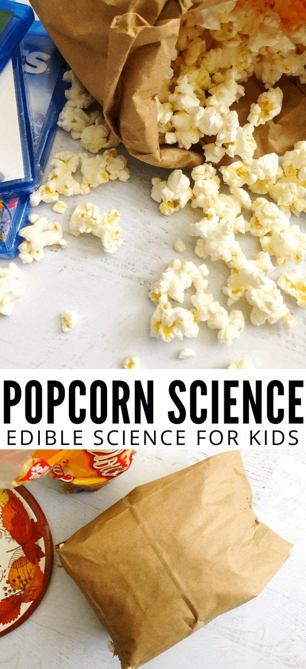 Why does popcorn pop?  Find out the science of popcorn while making your own microwave popcorn in a bag.