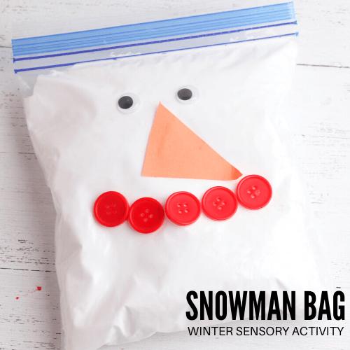 Snowman in a bag