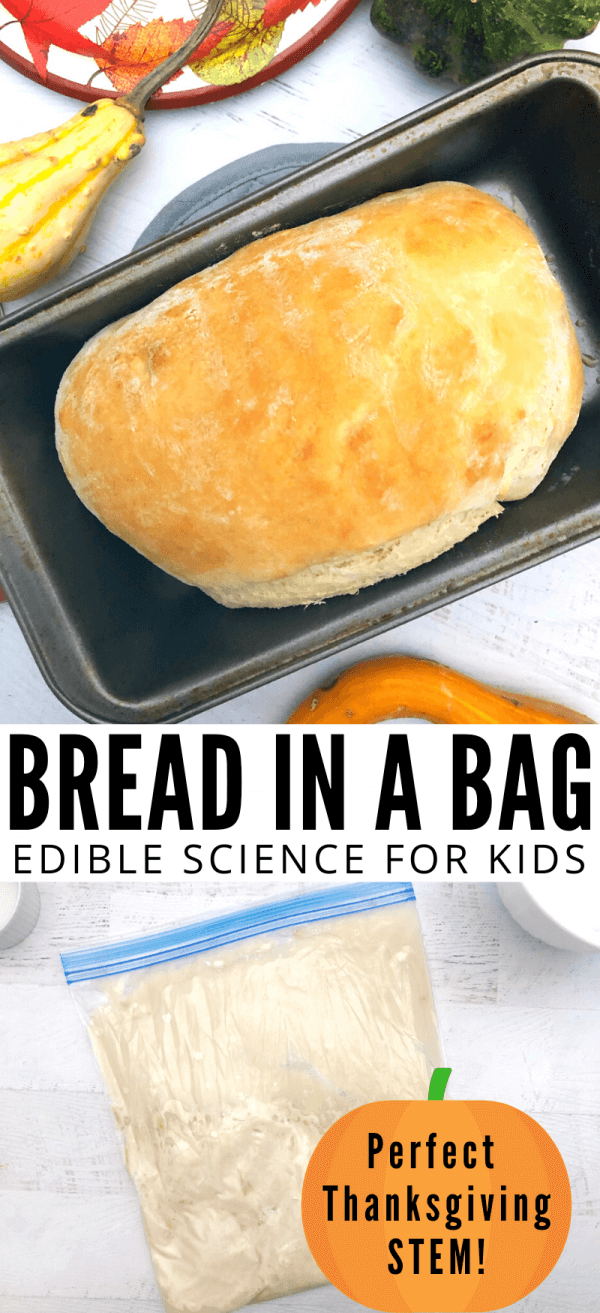 Bread in a bag recipe that makes amazing homemade bread.